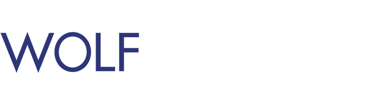 WOLF Ingenieurgesellschaft mbH Logo